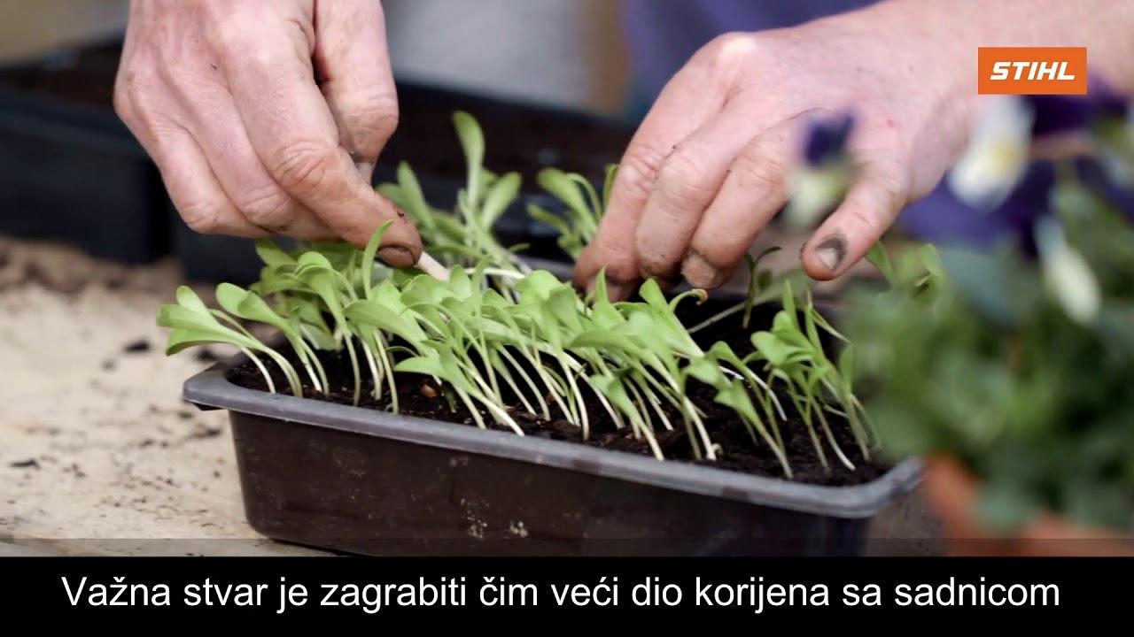 VRTLARICA STIHL